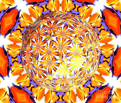 Abstract Photograph - Abstract Bird Of Paradise Flower Under Polyhedron Glass 2 by Rose Santuci-Sofranko