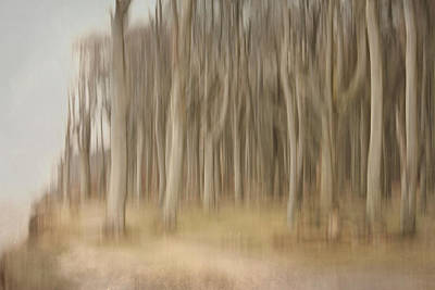Fantasy Tree Mixed Media - Abstract Ghost Forest by Heike Hultsch