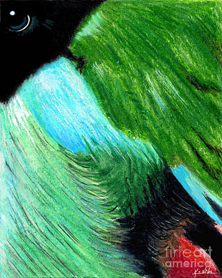 Colorful Abstract Drawing - Abstract Hooded Pitta Bird by Kim Niles