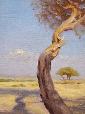 Acacia Twisty Original by Ben Hubbard