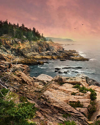 Atlantic Ocean Mixed Media - Acadia National Park by Lori Deiter