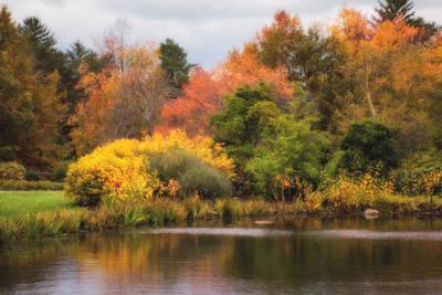 Resting Photograph - Across The Pond by Tom Mc Nemar
