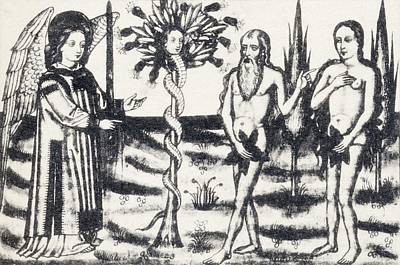 Bible Drawing - Adam And Eve In The Garden Of Eden by Vintage Design Pics