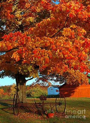 Antique Hay Rake Photograph - Adirondack Autumn Color by Diane E Berry