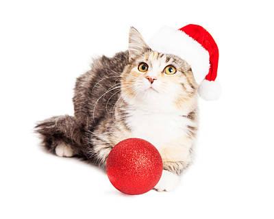 Adorable Calico Christmas Kitten Print by Susan Schmitz