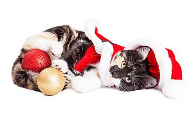 Adorable Christmas Calico Santa Kitty Print by Susan Schmitz