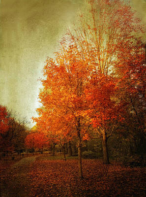 Maple Leaf Digital Art - Aflame by Jessica Jenney