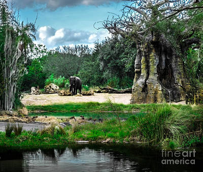 Photograph - African Bush Elephant Playground by Gary Keesler