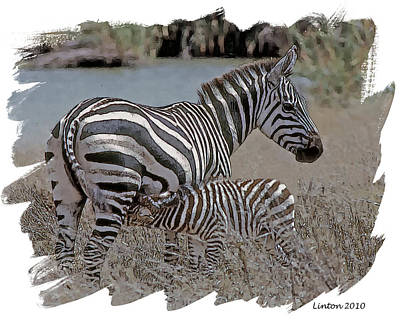 Zebra Digital Art - African Oasis by Larry Linton