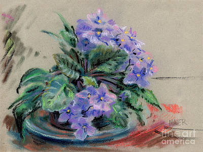 Pastel Drawing - African Violet by Donald Maier