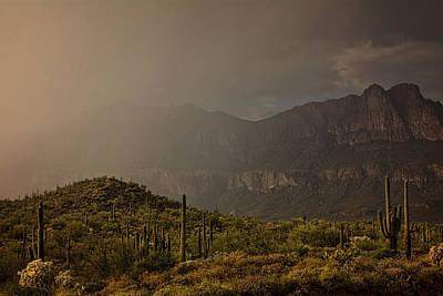 Rainy Day Photograph - After The Spring Rain  by Saija Lehtonen