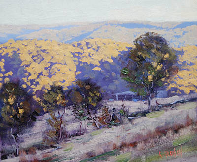 Tree Traditional Art Painting - Afternoon  Sunlight Turon Australia by Graham Gercken
