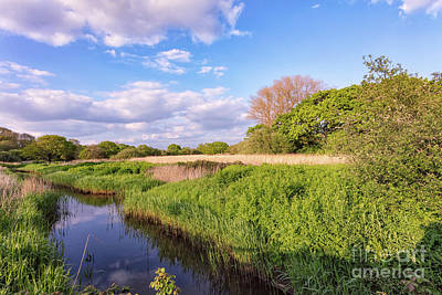 Afton Marsh 2 Print by English Landscapes