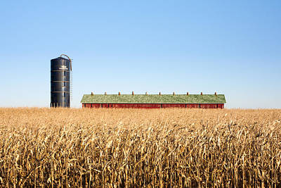 Red Barns Photograph - Against The Grain by Todd Klassy