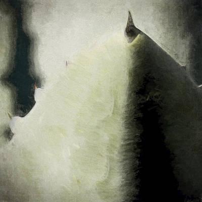 Soft Digital Art - Agave Impression Four by Carol Leigh