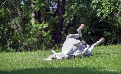 Horse Farm Maryland Photograph - Ahhhhhhhhhh by Brian Wallace