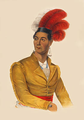 Drawing - Ahyouwaighs Chief Of The Six Nations by Unknown