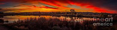 Airport Pond Sunrise Print by Robert Bales