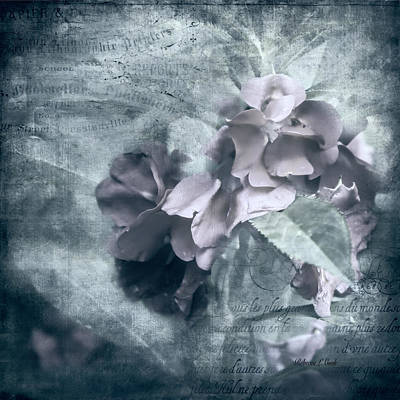 Simplicity Mixed Media - Alabaster Petals by Bellesouth Studio