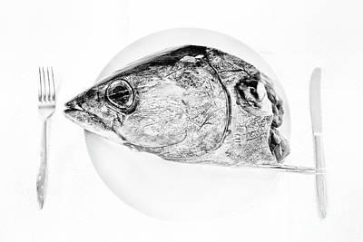 Bbq Photograph - Albacore Tuna Head by Masako Metz