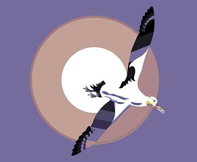 Albatross Drawing - Albatross Soaring With Wings Spread by Richard Gage