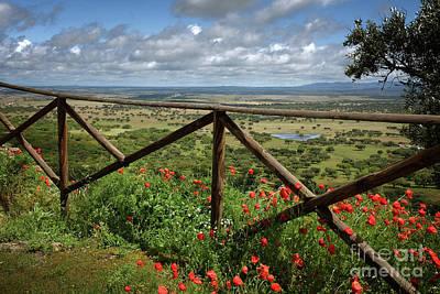Alentejo Photograph - Alentejo Landscape by Carlos Caetano