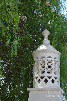 Flower Photograph - Algarvian Chimney And Tree by Angelo DeVal