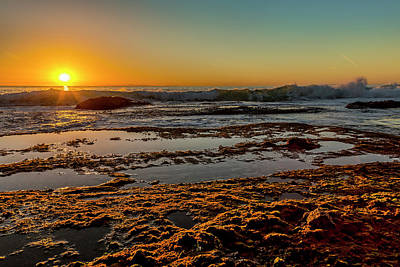 Aliso Point Print by Kelley King