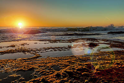 Aliso Point With Flare Print by Kelley King