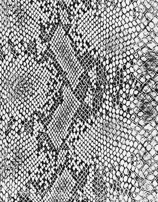 Crocodile Mixed Media - Alligator Skin by Marilu Windvand