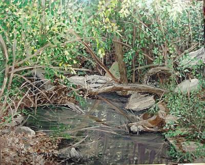 Arkansas Painting - Alma House Creek by Sharon  De Vore