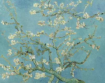Almond Tree Painting - Almond Blossom by Vincent van Gogh