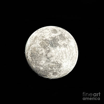 Almost A Full Moon Print by Sharon McConnell