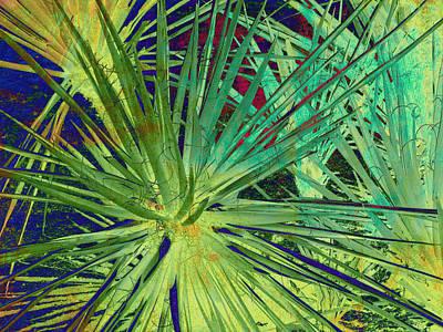 Aloe Vera Plant Print by Susanne Van Hulst