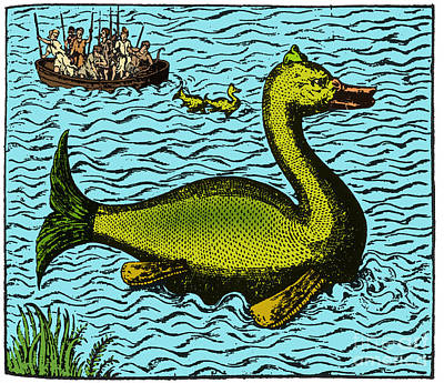 Aloes, Monster Fish, 16th Century Print by Science Source