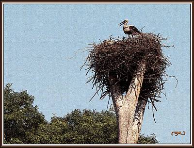 Stork Mixed Media - Alone In The Nest by Pemaro