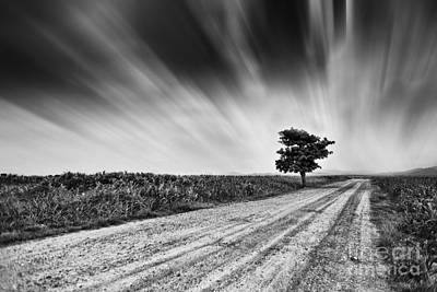 Alone On The Breeze Original by Pojcheewin Yaprasert