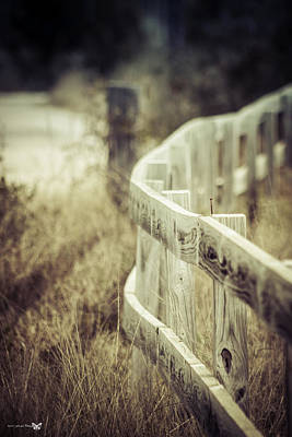 Along The Fence Print by Debra Forand
