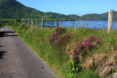 Along The Kerry Way Print by Aidan Moran