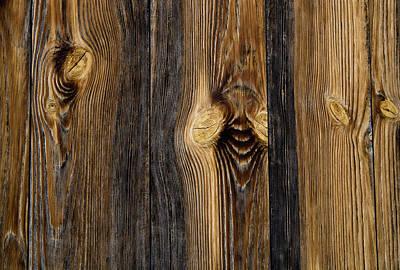 Photograph - Alpine Wood by Frank Tschakert