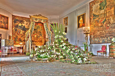Old Beloeil Photograph - Amaryllis Exhibition In Beloeil Castle, Belgium by Sinisa CIGLENECKI