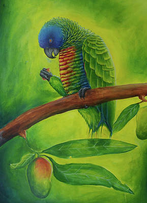 St. Lucia Parrot Painting - Amazona Versicolor And Mango by Ross Daniel