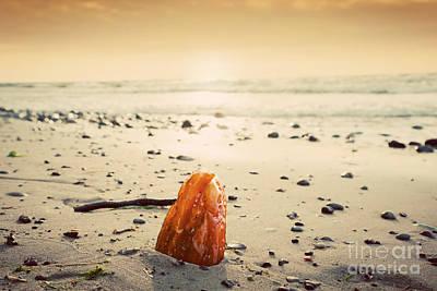 Amber Stone On The Beach Print by Michal Bednarek