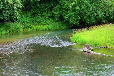 Photograph - Ambush Creek by Tikvah's Hope