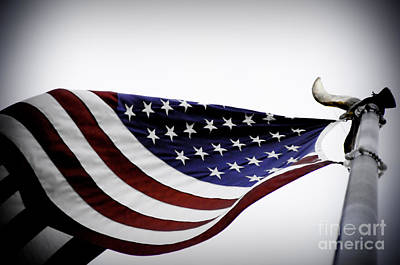 July 4 Photograph - American Flag by Liesl Marelli