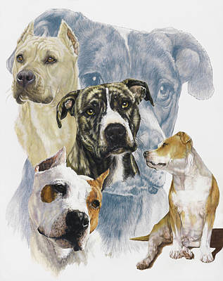 American Staffordshire Terrier Print by Barbara Keith