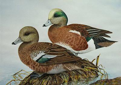 American Widgeons Print by Elaine Booth-Kallweit
