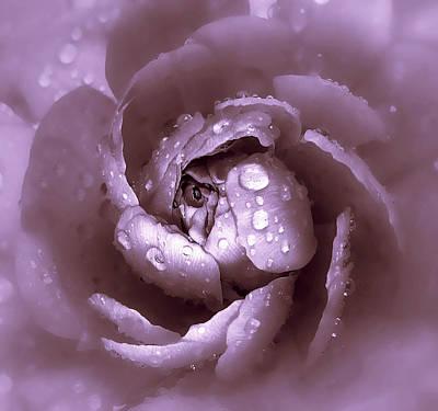 Rain Digital Art - Amethyst by Jessica Jenney