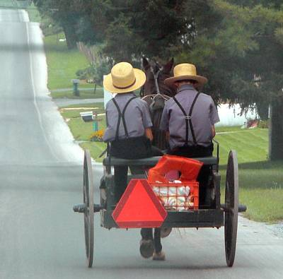 Amish Boys On A Ride Print by Lori Seaman