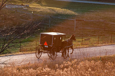 Amish Photograph - Amish Buggy Afternoon Sun by David Arment